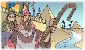 Moises 14