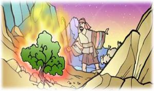Moises 8